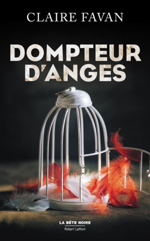 dompteurs d'anges